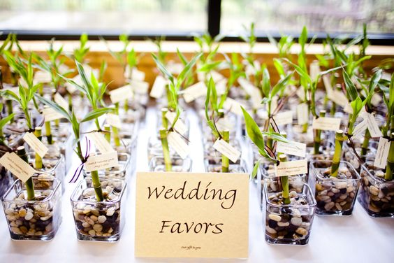 dollar store wedding favors